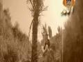 Na Ho Aaram Jis Bimar - Farhan Ali Qadri Naat
