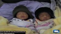 Pakistani Women gives birth to 5 babies at Peshawar