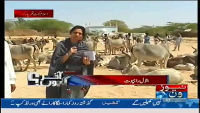 Akhir Kiyon 17th March 2014 by Batool Rajput on Monday at News One