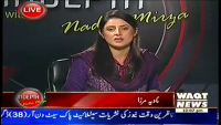 Indepth with Nadia Mirza 8th April 2014 Tuesday at Waqt News