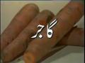 Gajar Ke Qudrati Fawaid - Hakeem Abdul Ghaffar Agha Tips
