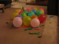 Dogs vs Balloons Compilation