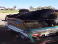 Dangerous Bull Offloading Video