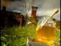 The Honey Industry - From Beehive To The Factory