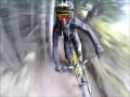 Ride In Whistler Mountain Bike Park