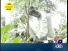 Aik Din Geo k Sath 22nd November 2014 by Sohail Warraich on Saturday at Geo News