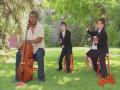 Surprise Orchestra Prank