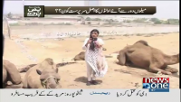 Pas e Pardah 28th May 2015 by Nadia Naqi on Thursday at News One