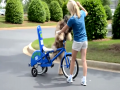 Dog Learning Ride Bicycle