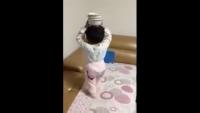 Very Talented Kid