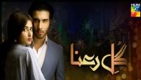 Gul E Rana Episode 14 HUM TV