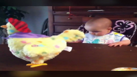 Baby Freaks Out Over Toy Hen Laying Egg
