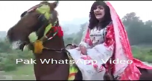 What Happened When A Girl Was Told To Shoot For A Song On Horse