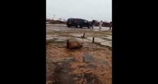 Bakra Mandi Video After Heavy Rain Fall In Karachi