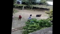 Most Dangerous Cow In Eid-ul-Adha 2016