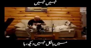 Nahi Nahi Me Bilkul Nahi Dekh Raha - Watch Till The End