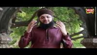 Hafiz Muhammad Tahir Qadri - Mera Maula Maula Hussain Hai - Mera Maula Maula Hussain Hai
