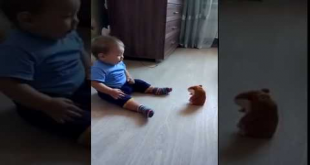 What Happen When This Kid Play With Toy Rat