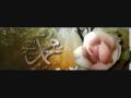 Aao Mil Kar Jashne Wiladat Manao- Mushtaq Qadri Attari