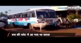 Maa Ki Muhabbat Ki Azeem Misaal Is Video Me