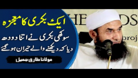Ek Bakri Ka Mojza Latest Bayan By Maulana Tariq Jameel