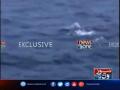Whale Spotted In Gwadar, Pakistan