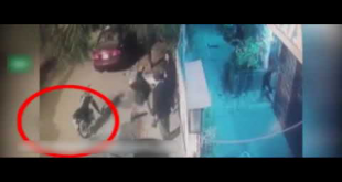 Brave Old Man Foils Robbery Attempt In Karachi