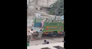 Cow Runs Near Jamshed Road