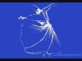 Meri Dachi De Gal Wich Taliaan By Imran Sheikh Qadri