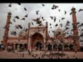Parvardigaar-e-Behr o Bar By Khurshid Ahmed