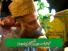 Labiak Ya Habibi Labiak Yas Rasool - Syed Muhammad Fasih Uddin Soharwardi