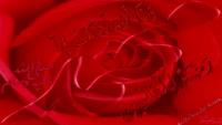 Humein Apna Woh Kehte Hain - Shahbaz Qamar Fareedi Naat
