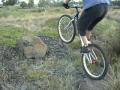 Amazing Cycle Show