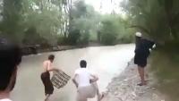 Wood Flood in River of KPK