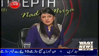 Indepth with Nadia Mirza 25th March 2014 Tuesday at Waqt News