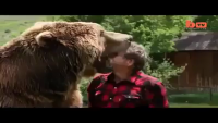 Friendship Between Man Bear