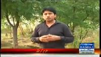 Hum Log 29th March 2014 by Ali Mumtaz on Saturday at Samaa News TV