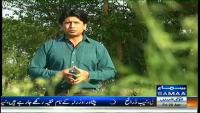 Hum Log 25th April 2014 by Ali Mumtaz on Friday at Samaa News TV