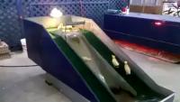 Beautiful Chicks Playing On Water Slide
