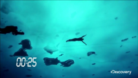 Swimming Under Ice - New Guinness World Record
