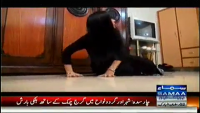 Court Number 5 - 30th June 2014 by Amina Kabir on Monday at Samaa News TV