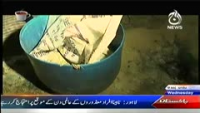 Target 3rd December 2014 by Sherry on Wednesday at Ajj News TV