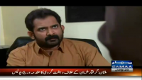 Wardaat 14th January 2015 by  on Wednesday at Samaa News TV