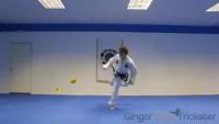 Amazing Karate Skills
