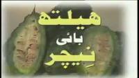 Onion Health Benefits By Nature by Hakeem Syed Abdul Ghaffar Agha