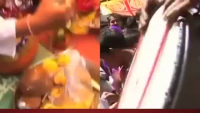 Dog Gets Marriage In India