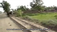 Pakistani Tanga Train Service