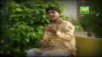 Maan Ka Dil