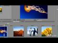 Video Editing in Urdu Lesson4