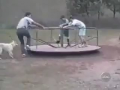 Funy Accidents